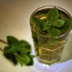 Lekovito bilje i čajevi za bolesti organa za varenje