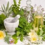 Lekovito bilje protiv gljivica ekcema lišajeva…