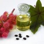 Ricinusovo ulje upotreba za kosu, trepavice, obrve, nokte…