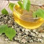 Čaj od breze