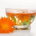 Prirodni lekovi i lekovito bilje za hemoroide (šuljeve)