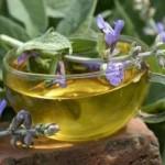 Čaj od žalfije priprema, upotreba, lekovitost