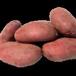 Krompir lekovito delovanje – sok od krompira recept