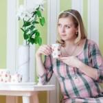 Čaj u trudnoći: đumbir, kamilica, brusnica…