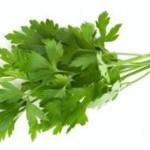 Biljka peršun i zdravlje – upotreba i uzgoj peršuna