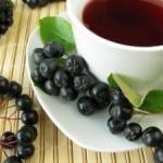 Čaj od aronije priprema, lekovito dejstvo, upotreba u trudnoći