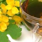 Biljka rosopas lekovitost, čaj, kapi, gel