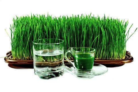 sok psenicna trava