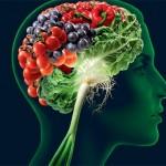 Hrana za mozak, pamćenje i koncentraciju