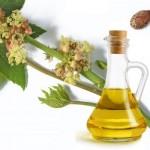 Ricinusovo ulje upotreba za kosu, lice, obrve, trepavice, probavu