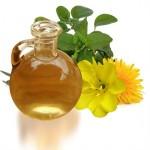 Ulje žutog noćurka upotreba za zdravlje, lice, akne, iskustva, cena