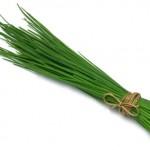 Luk vlašac začin za bolje zdravlje – recepti, uzgoj…
