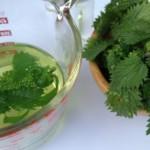 Sirup i sok od koprive recept, upotreba za anemiju i bolje zdravlje