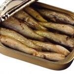 Jedite sardine pune su proteina i vitamina za dobro zdravlje
