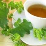 Virak čaj priprema i upotreba za miome, ciste, plodnost, mršavljenje…