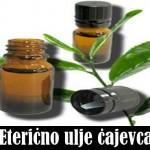 Eterično ulje čajevca za kosu, akne, gljivice, upotreba u trudnoći