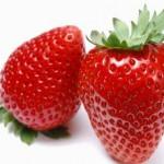 Jagode i zdravlje, vitamini, divlje jagode lekovitost