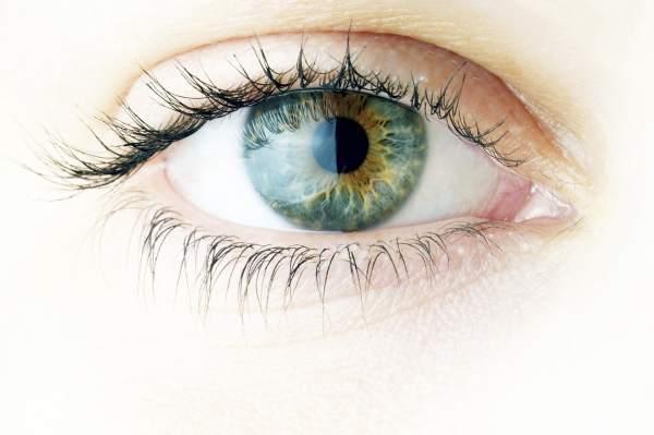 hrana za bolji vid