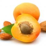 Koštice kajsije kao lek protiv raka – vitamin b17 – ulje