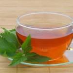 Čaj od koprive kao lek za anemiju, akne, kosu, celulit…