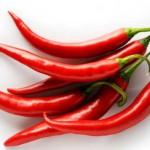 Ljute papričice kao lek, gajenje, zalivanje, rasađivanje