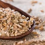 Spelta zdrava žitarica za doručak, hleb, bebe – sok od spelte