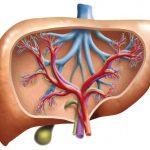 Povišeni enzimi jetre transaminaze i aminotransferaze, uzroci i lečenje