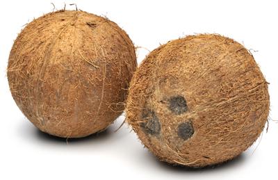 kokosovo ulje mleko