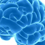 Encefalitis – upala mozga simptomi, uzrok, lečenje
