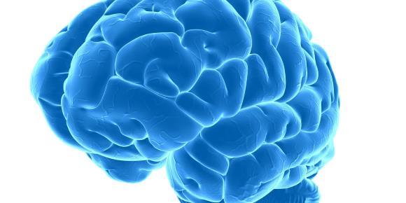 upala mozga encefalitis
