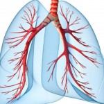 Voda u plućima – edem pluća simptomi, uzrok, lečenje