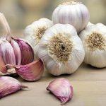 Beli luk: Čudotvorni lek u lečenju gljivičnih infekcija i kandide