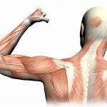 Bolovi u mišićima i zglobovima mogući uzroci