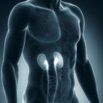 Hematurija (krv u mokraći) uzroci, simptomi, lečenje