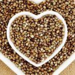 Seme konoplje kao lek, upotreba u ishrani, recepti