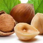 Lešnik kalorije, nutritivna vrednost, lekovita svojstva