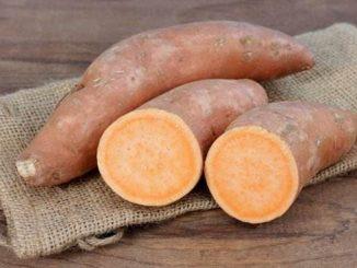 batat slatki krompir