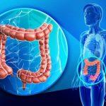 Debelo crevo: Zašto se javljaju bolovi u predelu debelog creva