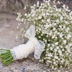Uzgoj šlajer cveća (gipsofile) u vrtu