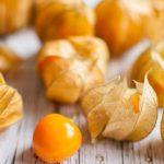 Peruanska jagoda (fizalis) – sadnja, uzgoj, lekovitost