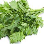 List celera u ishrani i kao lek