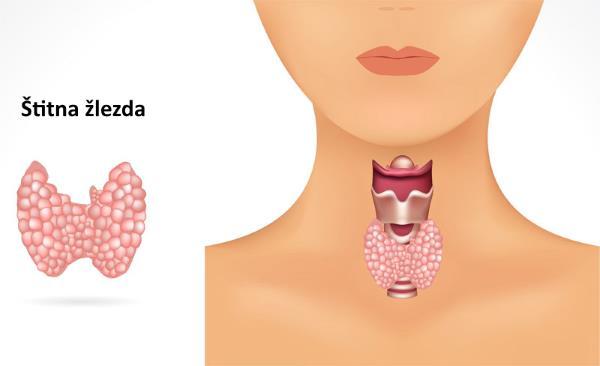 stitna zlezda simptomi bolesti