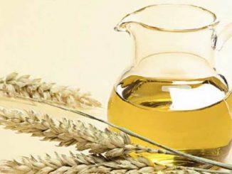 ulje od psenicnih klica