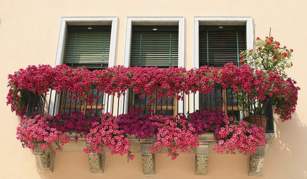 na balkonu