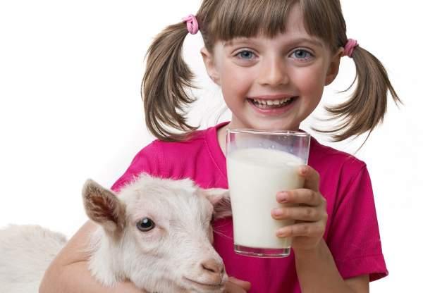 kozje mleko lekovitost
