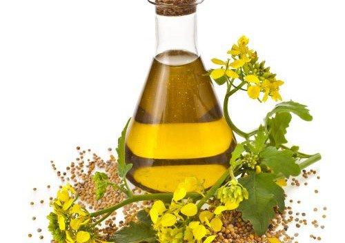ulje od uljane repice
