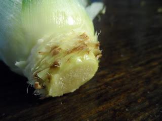 uzgoj ananasa u kuci